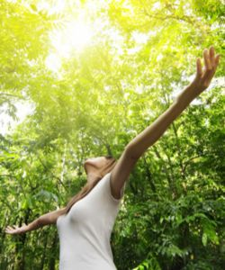 online Reiki courses help live life to the fullest