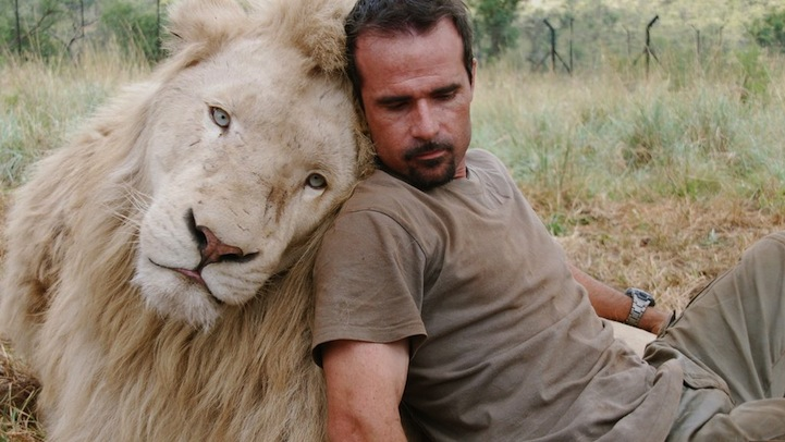 animal reiki man and lion pic